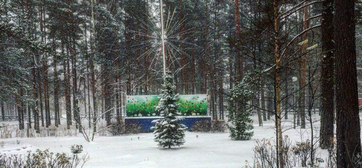 Приглашаем на зимние каникулы в ДОЛ «ВОЛНА»