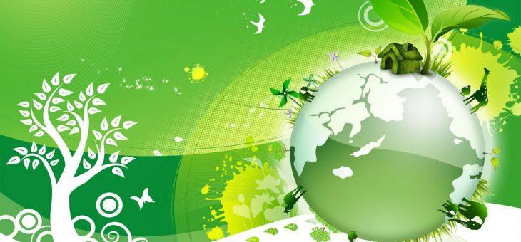Внимание! Экологический конкурс!